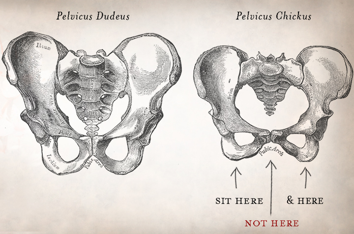 Male_vs_female_pelvis_LT